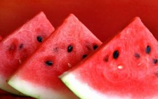 watermelon - featured image